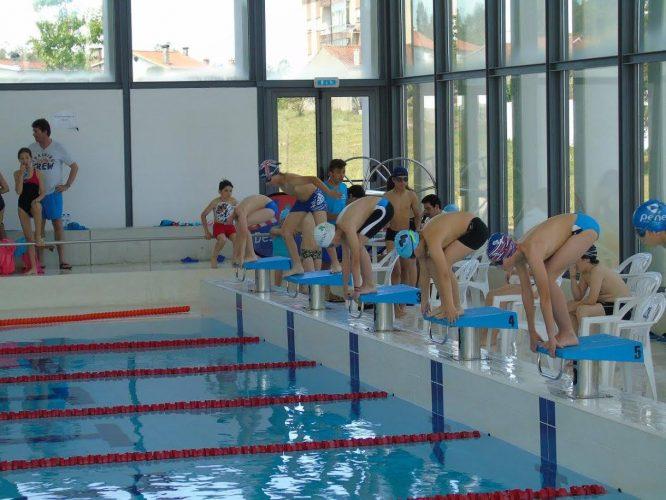 Final distrital natação